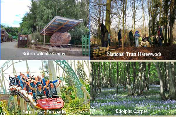 tourist-attractions in horley